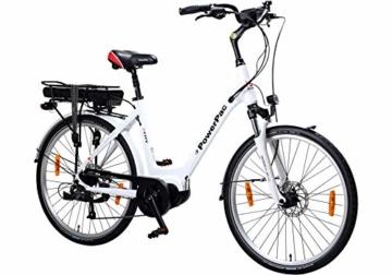 Powerpac Citybike Test seitliche Ansicht