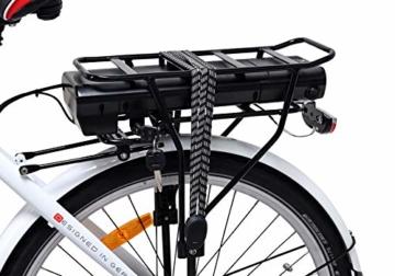 Powerpac Citybike Akku