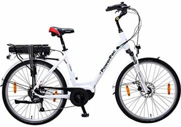 Powerpac Citybike offizielles Bild