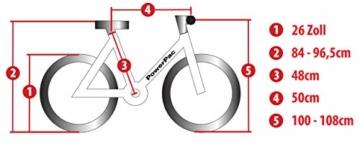 Powerpac Citybike Beschriftung